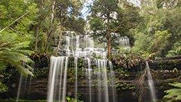 Hobart Waterfall